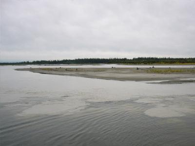 チェナ川タナナ川合流地点