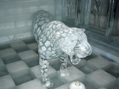 氷のヒョウ